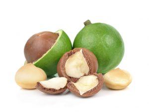 Kacang-Macadamia